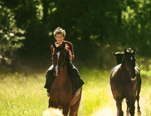 20 nomineringar till norska filmpriset Amanda