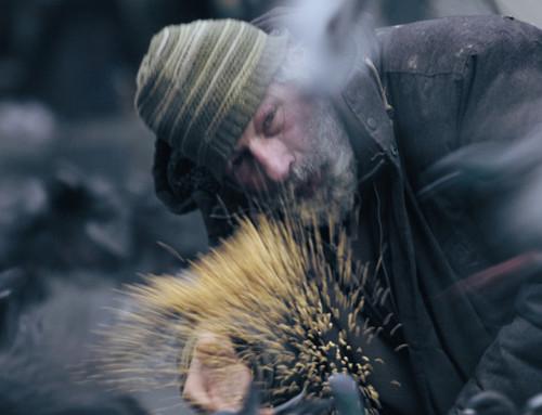 Lina Maria Mannheimers Man med duvor inviger Tempo Dokumentärfilmsfestival